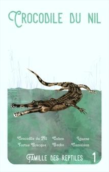 1-crocodile-du-nil