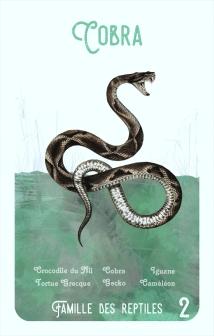 2-cobra