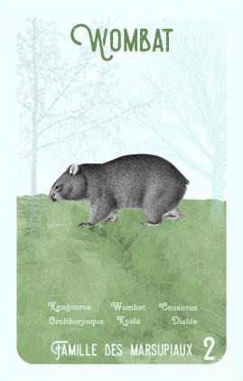 2-wombat