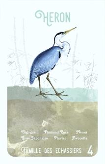 4-heron