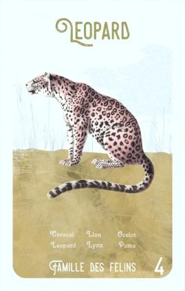 4-leopard