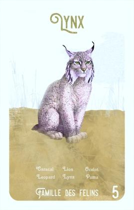 5-lynx
