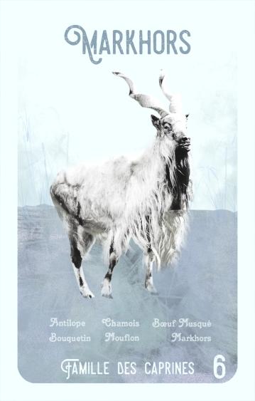 6-markhors