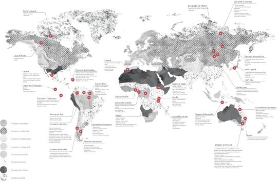 Carte du Monde des espèces 3(Fond JPEG)